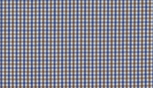 Blue and Mocha Gingham