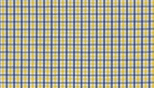 Load image into Gallery viewer, Yellow and Blue Gingham