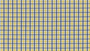 Yellow and Blue Gingham