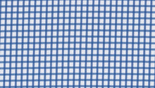 Load image into Gallery viewer, Light Blue Gingham