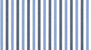 Light Blue and Charcoal Multi Stripe