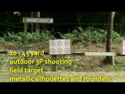 Air rifle target shooting in New Zealand