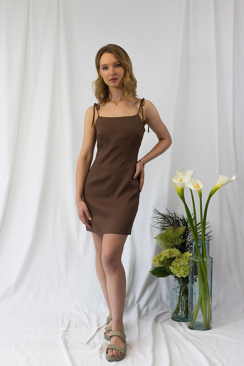 Chocolate Mocha Dress