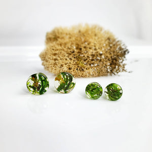 Forest Moss Plugs