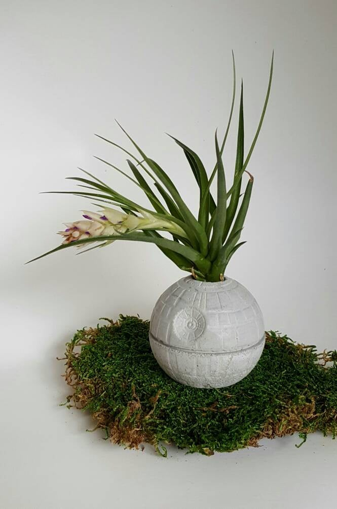Death Star Concrete Planter