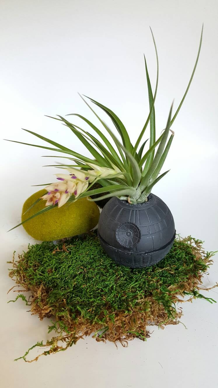Black Death Star Concrete Planter