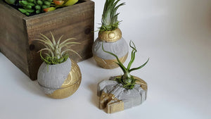 Star Wars Concrete Planters Set of 3