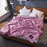40    New 100% Silk Comforter Summer Blanket Quilt Duvet Washable Ice soft Silk Air Conditioning Comforter Quilt Blanket