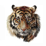 Patch Tigre Force Tranquille