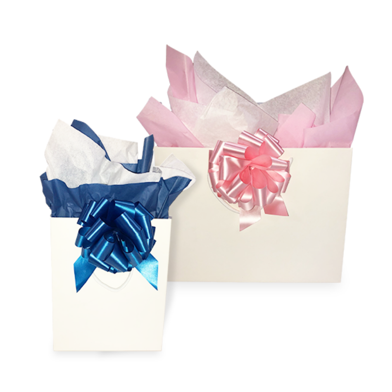 Gift Bag with Bow and Tissue (Unassembled)