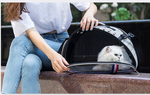 Portable Outdoor Puppies Pet Travel Carriers Collapsible Breathable Cat dog  Carrier Cage