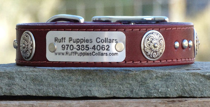 dog collars with conchos
