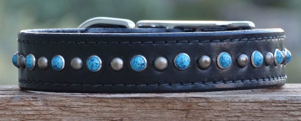 black leather dog collar with turquoise stones