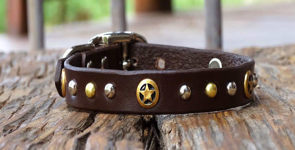 Extra small Leather Dog Collar with brass stars