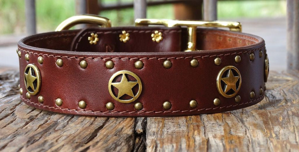 Huge Western leather dog collar with brass ranger stars