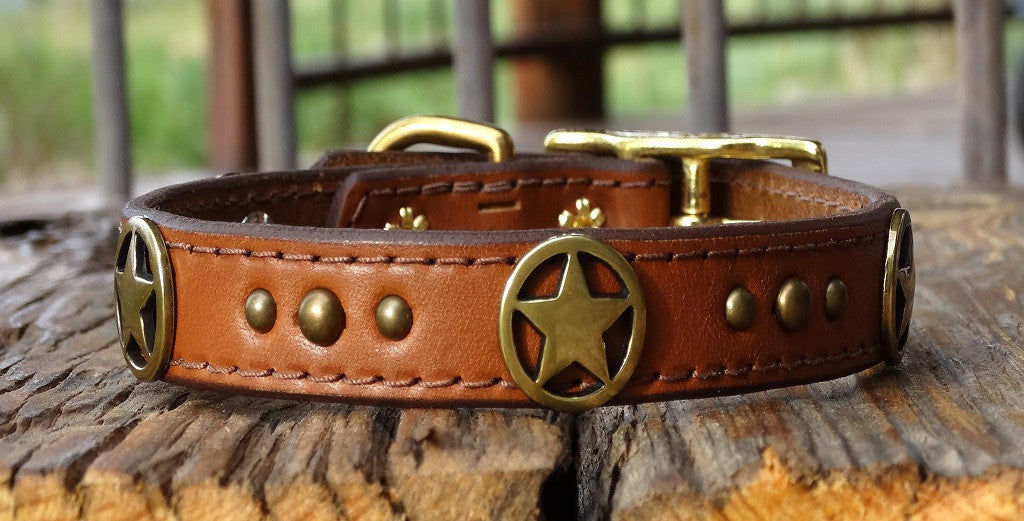 Medium Western Dog Collar with ranger stars