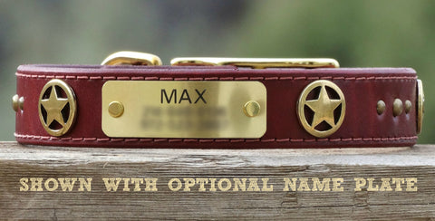Big leather dog collar with ranger stars and name plate