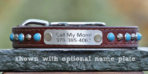 customized dog collars with name plate