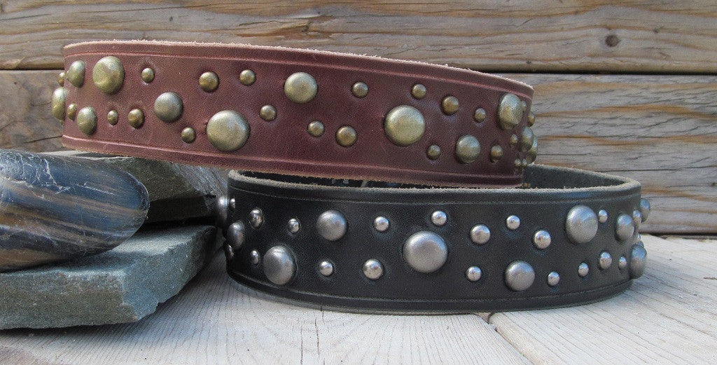 leather dog collars with brass or nickel studs