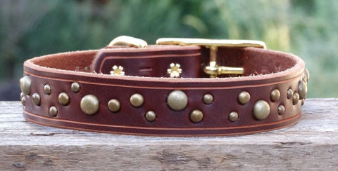 simple leather dog collars with brass spots