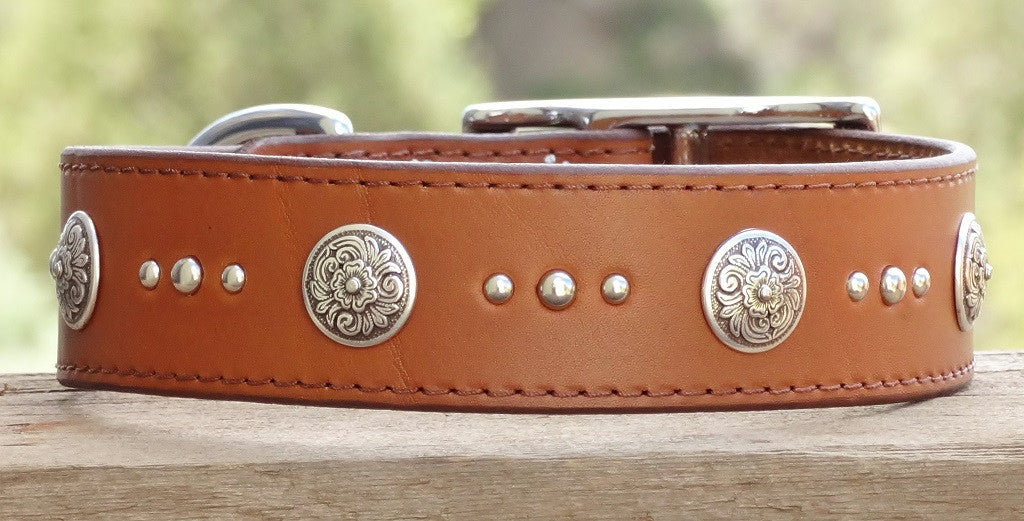 extra large brown leather dog collar with floral conchos