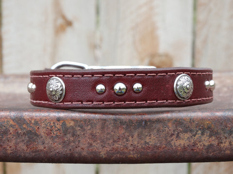 small brown leather dog collar with floral conchos