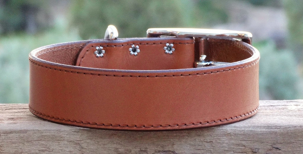 classic brown leather dog collar for extra large dogs