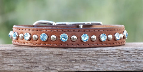 jeweled dog collar with blue crystals and metal studs