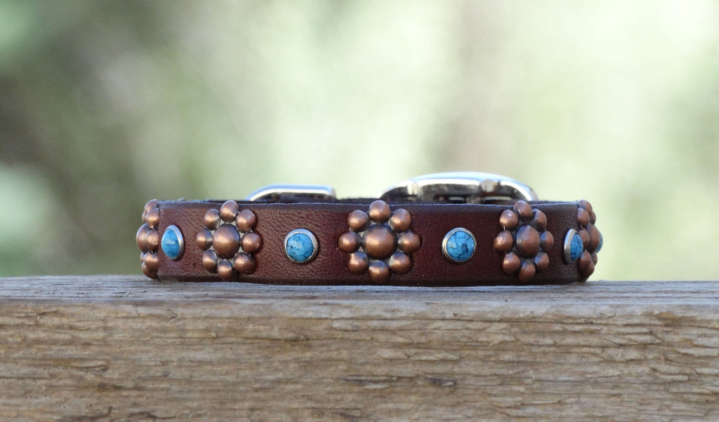 leather dog collar with turquoise