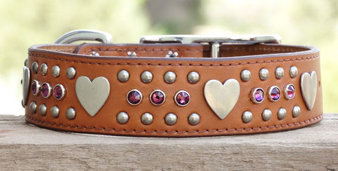 girl dog collar with heart conchos