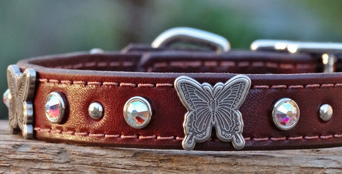 leather girl dog collar with butterfly conchos