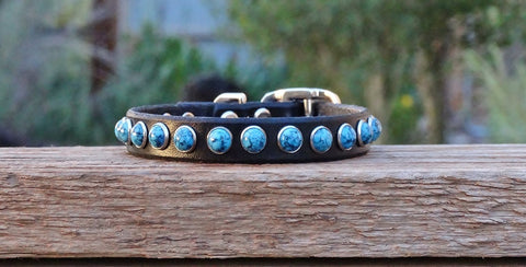 small leather dog collar with turquoise stones