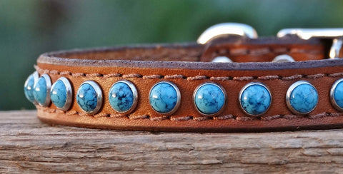 tan leather dog collar with turquoise stones