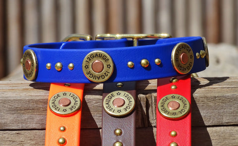 shotgun shell dog collar