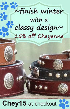 custom dog collars and leads on sale