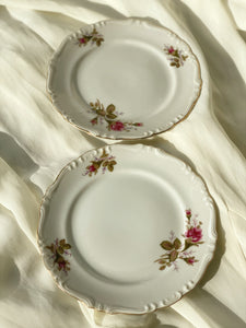 Vintage Floral Plates Set of 2 ( Small)