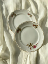 Load image into Gallery viewer, Vintage Floral Plates Set of 2 ( Small)