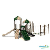 Grooving Gecko | Commercial Playground Equipment