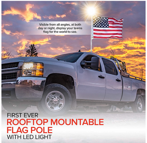 Rooftop mountable flag pole