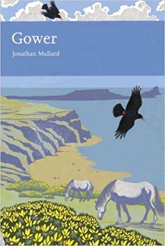 Gower (New Naturalist 99), Jonathan Mullard