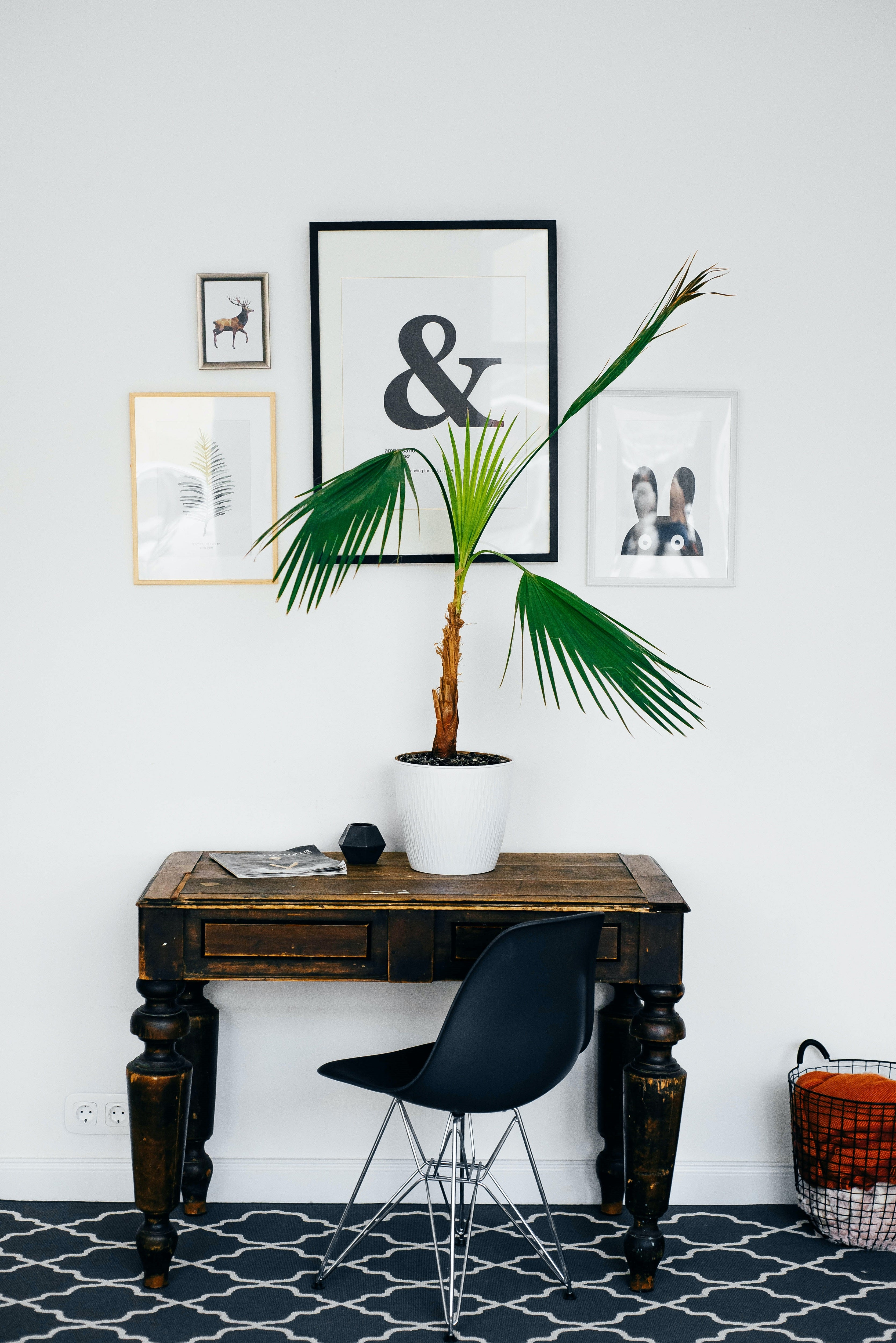 Mix and matched wall art above work desk, pot plant, black and white tiled floor, black chair with dark mahogany workspace
