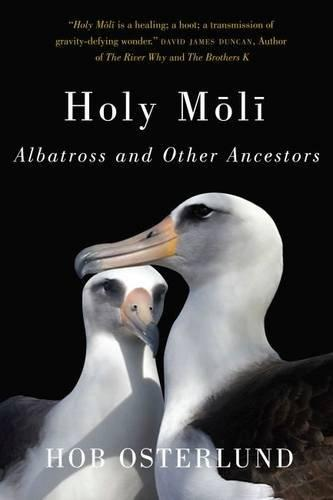Holy Moli Albatross and Other Ancestors