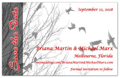 Unique Save the Date Magnets | Birds In Flight