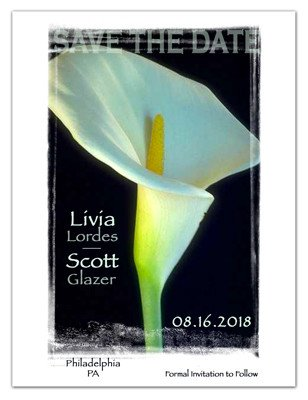 Elegant Save The Date Magnets | Calla Lily On Black | MAGNETQUEEN