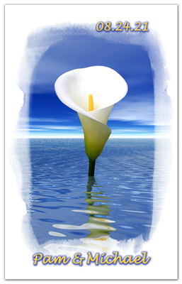 White Calla Lilly | On Water