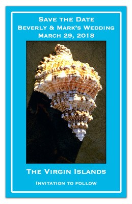 Sea Shell Save the Date Magnet  | Shell On Beach | MAGNETQUEEN