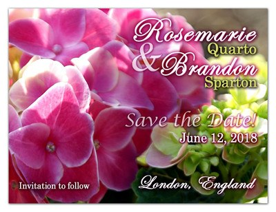 Save the Date Magnets | Hydrangea in Pink | MAGNETQUEEN