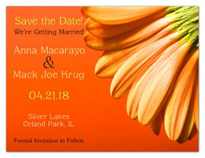 Wedding Save the Date Magnet | Orange Daisy | MAGNETQUEEN