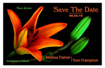 Save the Date Magnets | Orange Lily | MAGNETQEEN