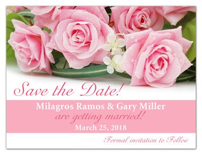 Light Pink Roses Save the Date Magnet | Heavenly Pink | MAGNETQUEEN